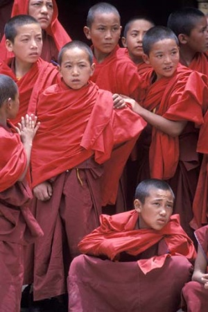 Buddhist monks are captivated.jpg